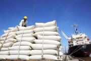 Thêm cơ hội tăng trưởng cho xuất khẩu gạo