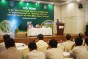 Tập trung nguồn lực sản xuất lúa gạo ở những vùng an toàn, đón cơ hội cuối năm