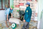 Giá lúa gạo tăng